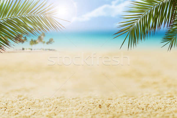 Sand And Palm Leaves On Shore At Beach Stock photo © AndreyPopov