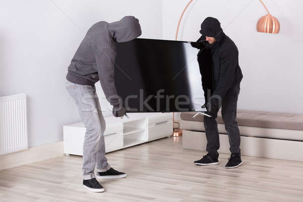 Robbers Stealing Television From Living Room Stock photo © AndreyPopov
