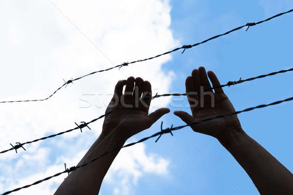 Refugee Holding Barbed Wire Fence Stock photo © AndreyPopov