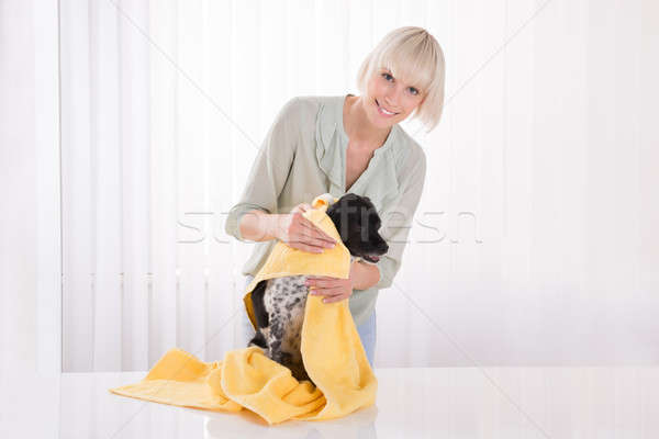 Woman Wiping Her Dog With Towel Stock photo © AndreyPopov