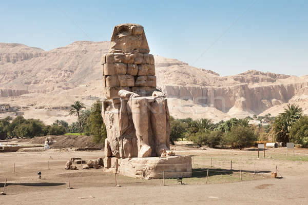 Standbeeld farao luxor Egypte hemel boom Stockfoto © AndreyPopov