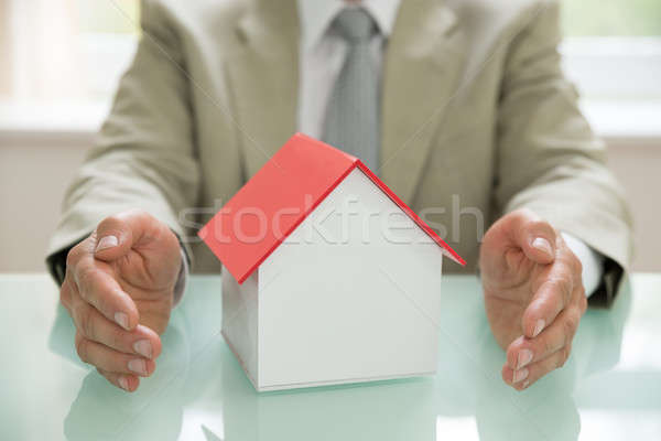 Businessman With House Model Stock photo © AndreyPopov