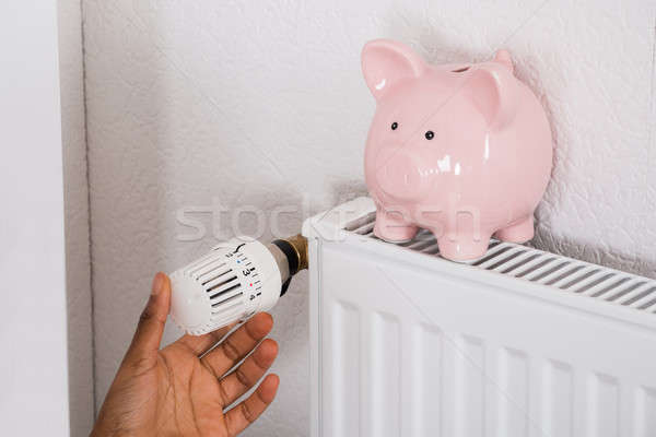 Woman's Hand Adjusting Thermostat With Piggy Bank On Radiator Stock photo © AndreyPopov