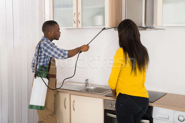 Male Worker Spraying Insecticide Stock photo © AndreyPopov