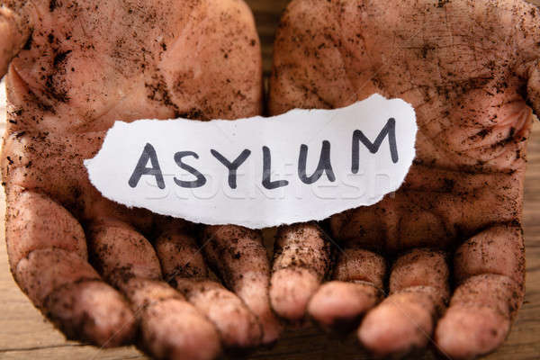 Man With Piece Of Paper Showing Asylum Word Stock photo © AndreyPopov