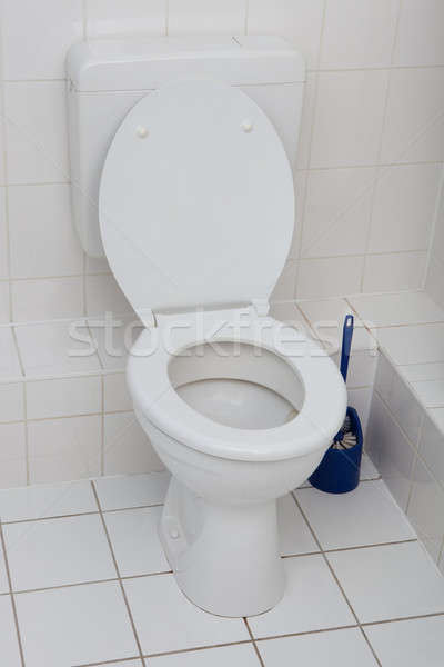 White Toilet Bowl In A Clean Bathroom Stock photo © AndreyPopov