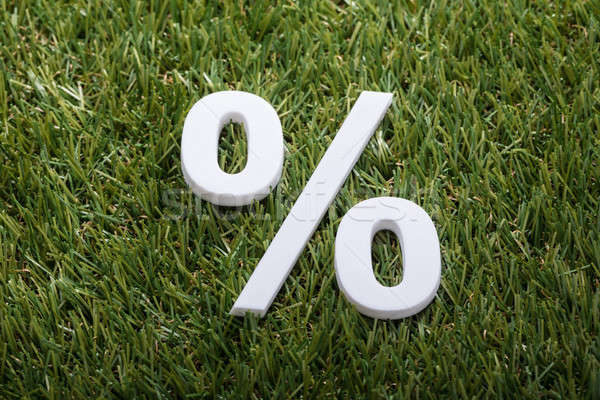 Percentage Sign On Green Grass Stock photo © AndreyPopov
