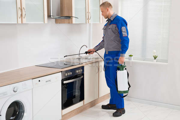 Pest Control Worker Spraying Pesticide On Induction Hob Stock photo © AndreyPopov