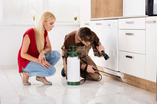 Woman Looking At Male Worker Spraying Insecticide Stock photo © AndreyPopov