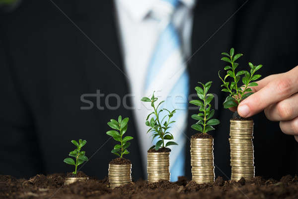 Businessperson Hand Holding Small Plant On Stacked Coins Stock photo © AndreyPopov