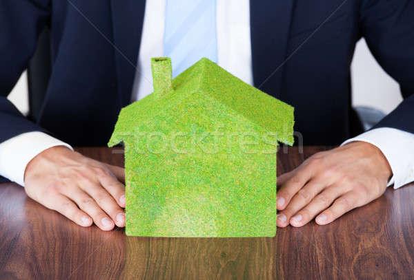 Businessman With Eco Friendly House Stock photo © AndreyPopov