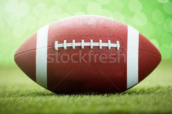 Rugby Ball On Grassy Field Stock photo © AndreyPopov