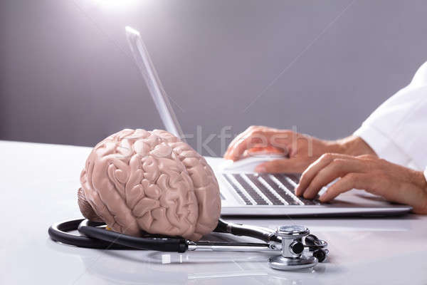 Close-up Of Human Brain Model And Stethoscope Stock photo © AndreyPopov