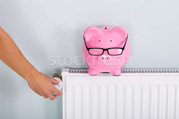 Person Adjusting Thermostat With Piggy Bank Stock photo © AndreyPopov