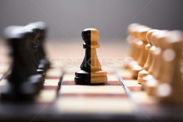 Double Color Pawn Amidst Other Chess Pieces On Board Stock photo © AndreyPopov