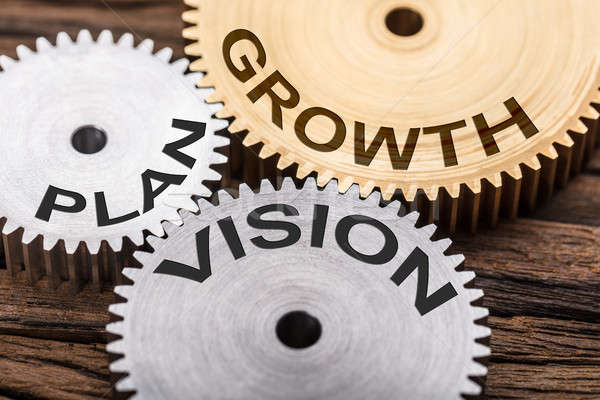 Closeup Of Plan  Vision And Growth Interlocked Cogwheels Stock photo © AndreyPopov