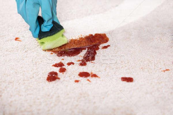 Persona limpieza mancha alfombra esponja primer plano Foto stock © AndreyPopov
