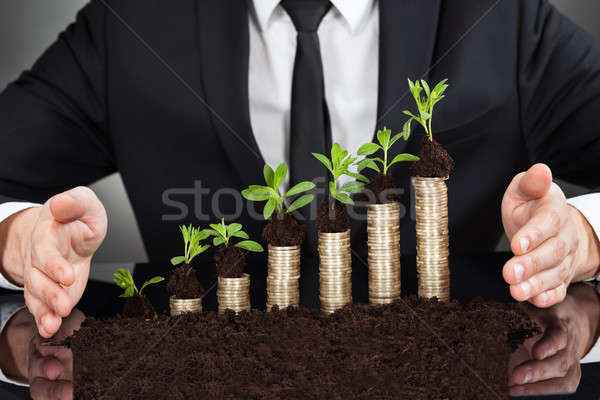 Businessman's Hands Protecting Coins In Saplings Stock photo © AndreyPopov