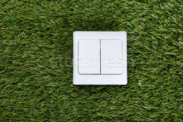 Switch On Grass Stock photo © AndreyPopov