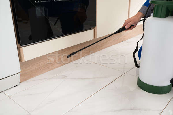 Person Hands Spraying Insecticide Stock photo © AndreyPopov