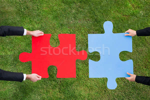Businessmen Joining Jigsaw Pieces Over Grassy Field Stock photo © AndreyPopov