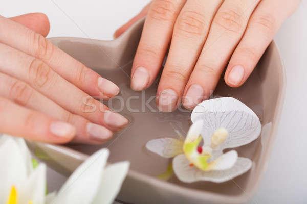 Vrouw handen water schoonheidssalon afbeelding vrouwen Stockfoto © AndreyPopov