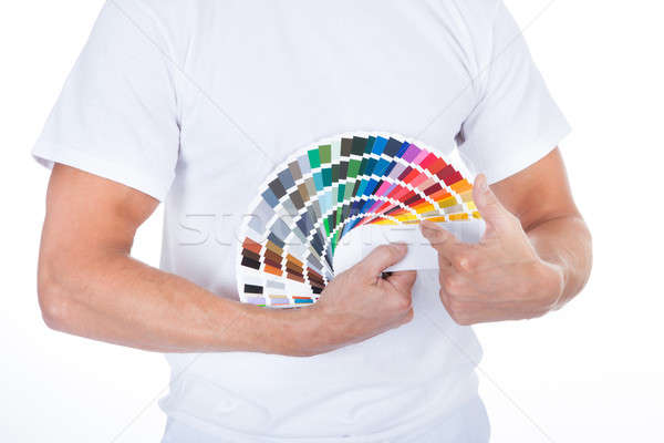 Stock photo: Male Painter Pointing On Swatch Book