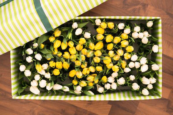 тюльпаны открытых окна шкатулке Сток-фото © AndreyPopov