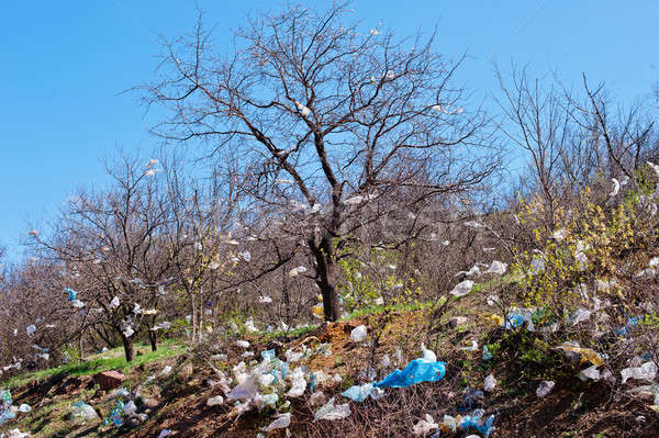 garbage dump  Stock photo © Andriy-Solovyov