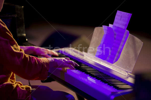music concert Stock photo © Andriy-Solovyov
