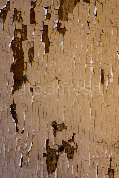 old wooden surface Stock photo © Andriy-Solovyov