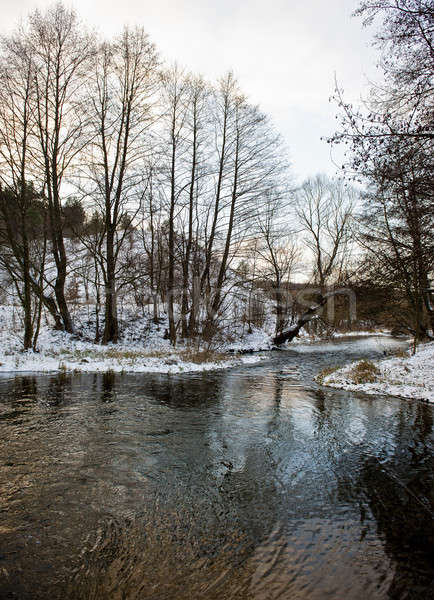 Kış manzara orman kapalı kar nehir Stok fotoğraf © Andriy-Solovyov
