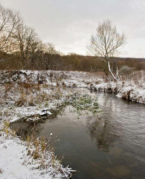 Inverno paisagem floresta coberto neve rio Foto stock © Andriy-Solovyov