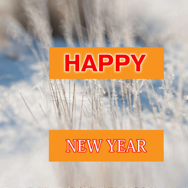 happy new year Stock photo © Andriy-Solovyov