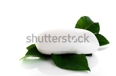 Bianco sapone foglie verdi verde rosa foglie Foto d'archivio © Anettphoto