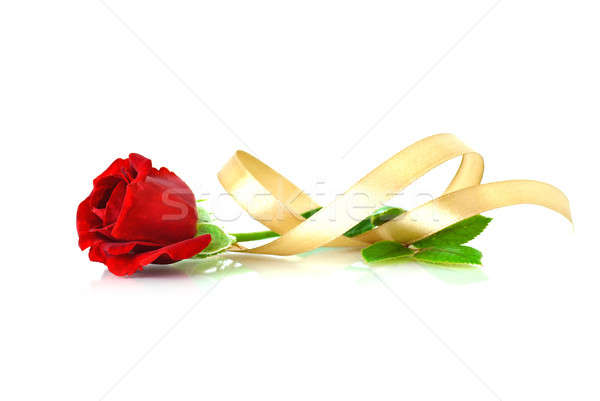 Piros rózsa szalag fehér arany izolált esküvő Stock fotó © Anettphoto