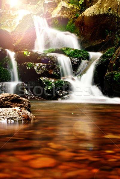 Gyönyörű vízesés erdő nap természet levél Stock fotó © Anettphoto