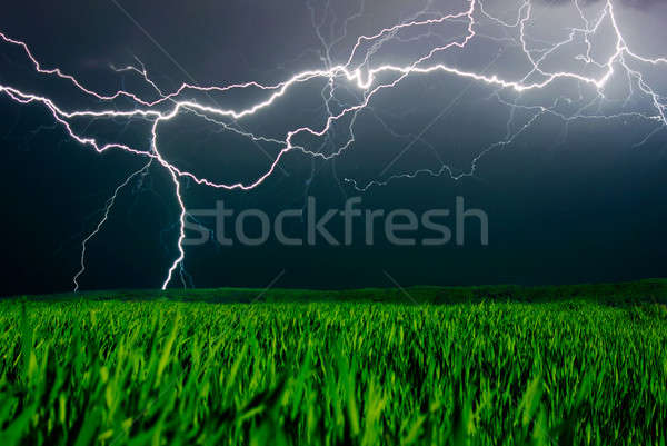 Lightning above the field Stock photo © Anettphoto