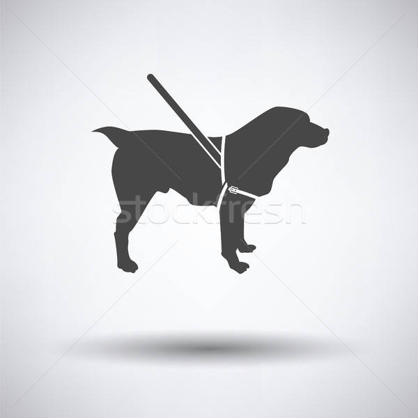Guide dog icon Stock photo © angelp