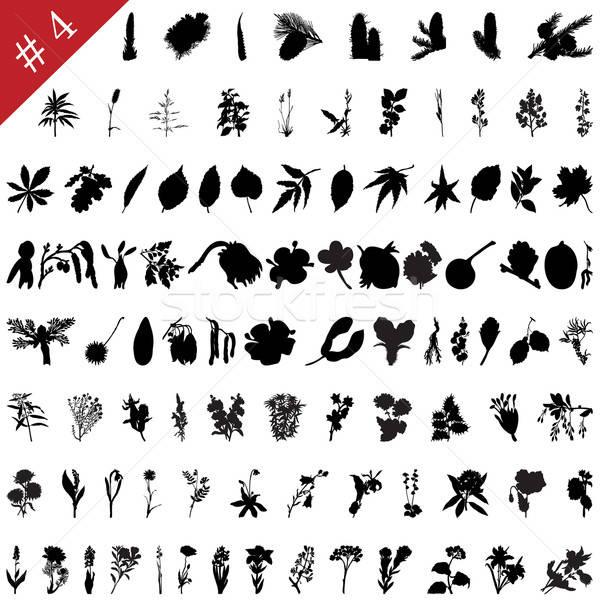 Photo stock: Plantes · vecteur · ensemble · différent · fleurs