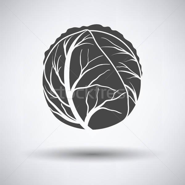 Cabbage icon Stock photo © angelp