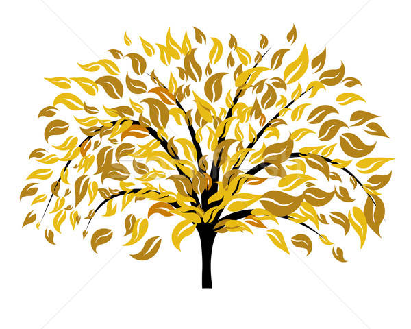 Autumn tree  Stock photo © angelp