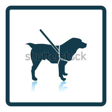 útmutató kutya ikon szürke zöld férfi Stock fotó © angelp