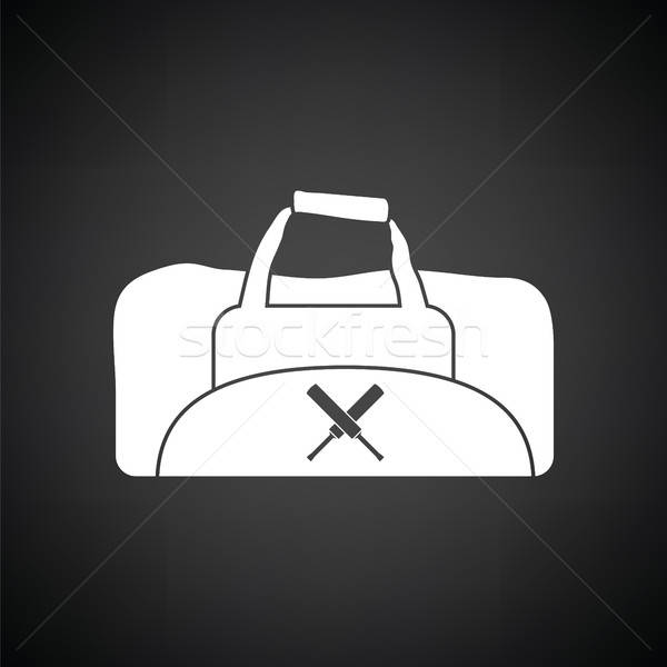 Cricket bag icon Stock photo © angelp