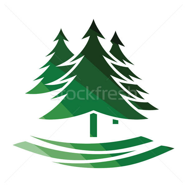 Fir forest  icon Stock photo © angelp