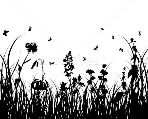 Trawy sylwetka wektora sylwetki projektu kwiat Zdjęcia stock © angelp