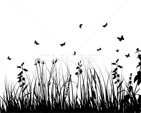 Bitki siluet çim siluetleri Stok fotoğraf © angelp