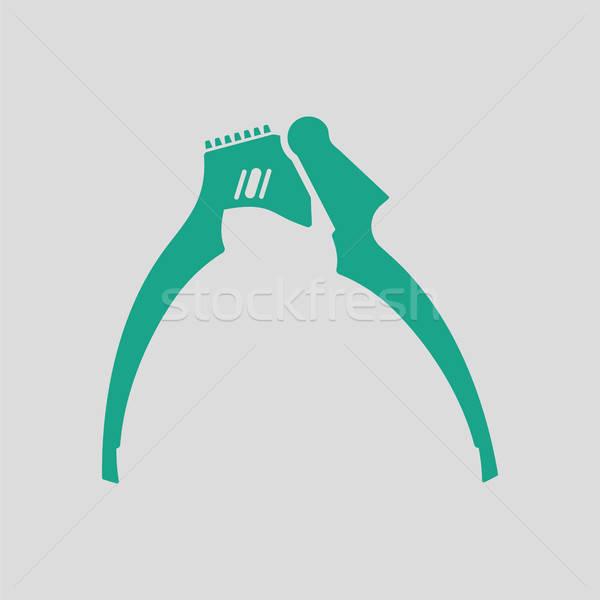 Sarımsak basın ikon gri yeşil gıda Stok fotoğraf © angelp
