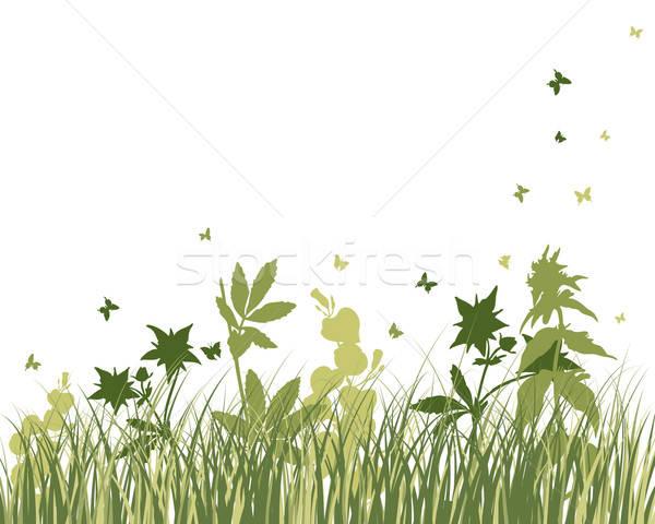 Foto stock: Pradera · siluetas · vector · hierba · todo · objetos