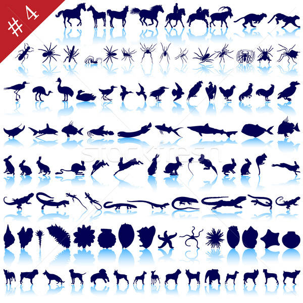 Conjunto animal silhuetas diferente animais aves Foto stock © angelp
